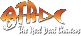 The Reel Deal Fishing Charters, Charleston, SC Logo
